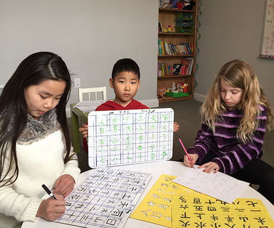 Milwaukee Chinese Culture & Language Services